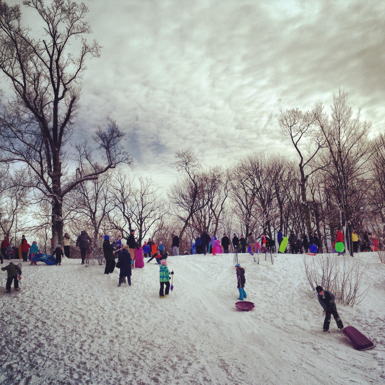 prospect park sled