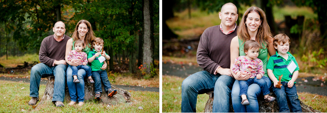 family portraits - tree stump